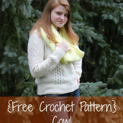 Marissa Cowl Crochet Pattern
