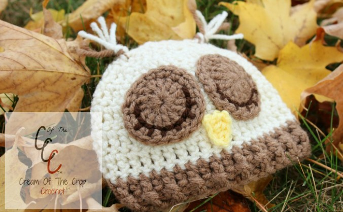 Cream Of The Crop Crochet ~ Preemie/Newborn Sleepy Owl Hats {Free Crochet Pattern}