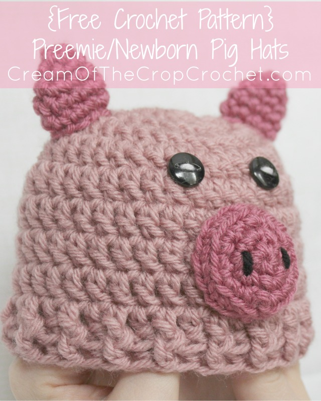 Crochet Pattern Pig Hat : Preemie Newborn Pig Hat Crochet Pattern Cream Of The ...
