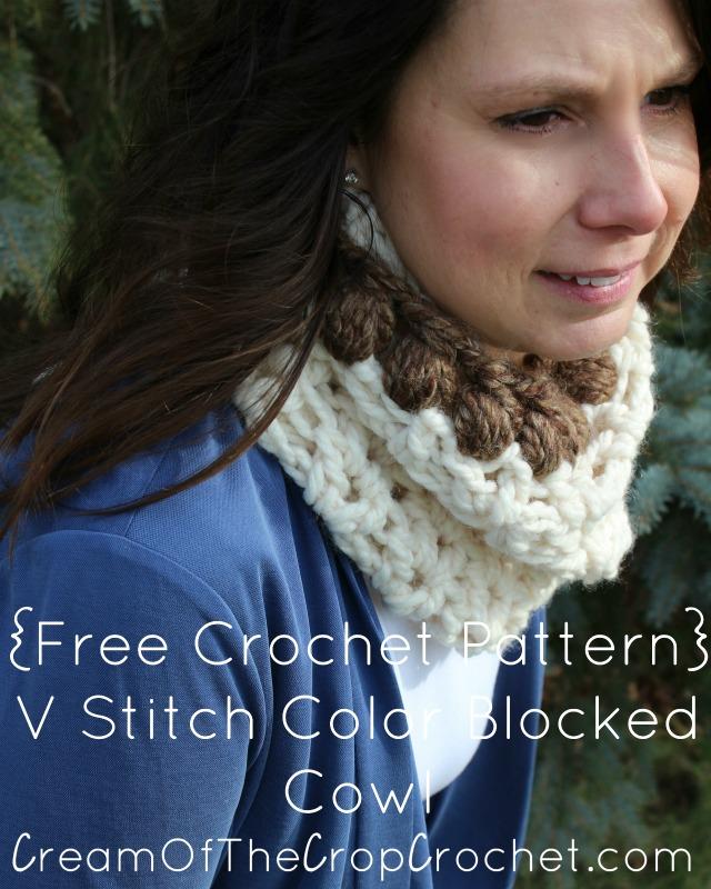 V Stitch Color Blocked Cowl Crochet Pattern
